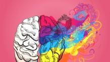 Consultoria projeta escolas que estimulam cérebro