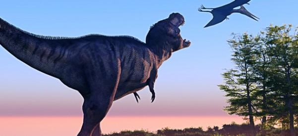 Curso on-line e gratuito sobre dinossauros, da Universidade de Alberta, permite que alunos vejam ossos em 3D, joguem com partes do corpo dos animais e naveguem por uma linha do tempo