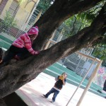 Crianças têm à disposição uma grande área verde - Crédito: Marina Lopes/Porvir
