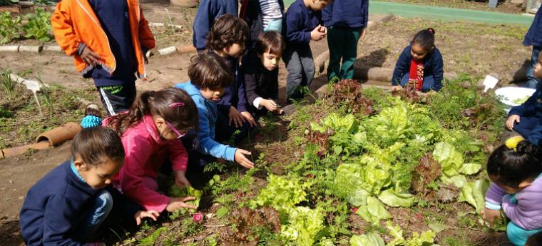 Construindo viveiros de infância_Beatriz Garcia Costa - 1